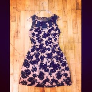 NWT Pink and Black Velveteen Dress - Sweet Storm